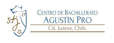 Logo Agustín Pro